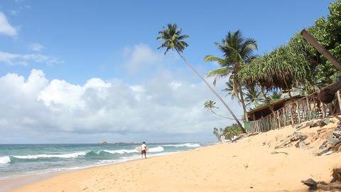 Beach Lifestyle Stock Video Footage