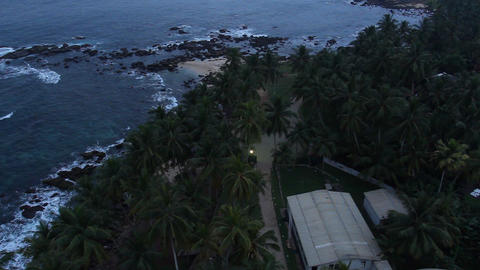 Top view of tree palm and sea Stock Video Footage