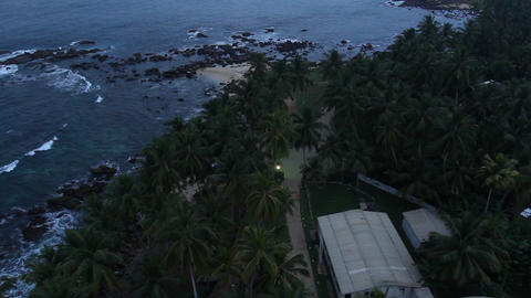 Top view of tree palm and sea Footage