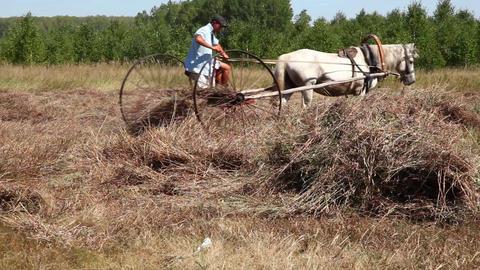 Peasants. On the farm Stock Video Footage