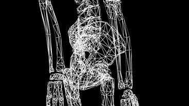 Rotation of 3D skeleton.Hip_bone,pelvis,pelvic,anatomy,human,medical,body,skull, Animation