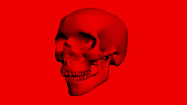 Rotation Of 3D Skull.bone,death,skeleton,illustration,design,dead, stock footage