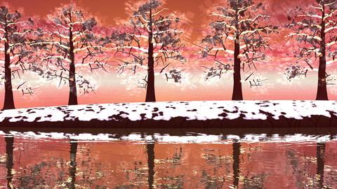 Winter trees landscape - 3D render Stock Video Footage