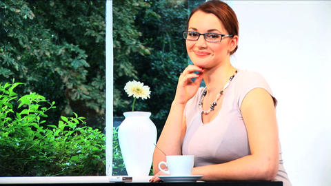 A portrait of an attractive brunette businesswoman... Stock Video Footage