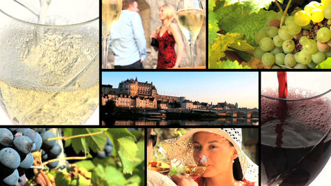 Collection of vineyard and wine footage Stock Video Footage