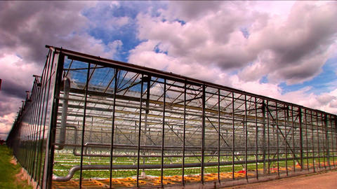 Timelapse clouds roll over a large greenhouse farm Stock Video Footage