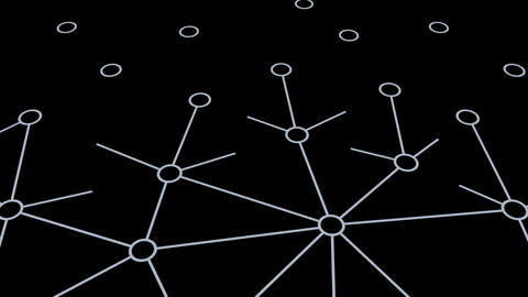 Social Network Connection B 1m 1 Animation