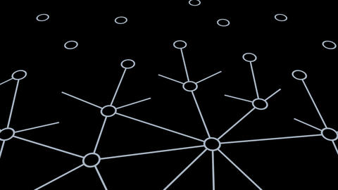 Social Network Connection C 1m 1 Animation