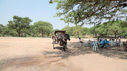 Cart near pagoda in Bagan Stock Video Footage