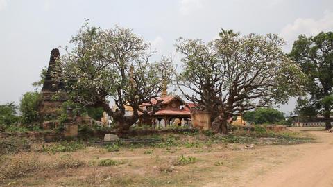 Pagoda in Samkar village, Myanmar Stock Video Footage