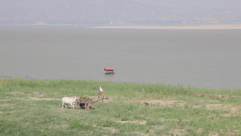 Riverbank of Irrawaddy River Stock Video Footage