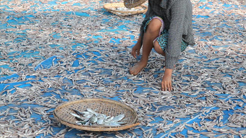 Woman turning dry fish Footage