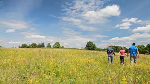 Happy Family Walking In The Summer Field stock footage