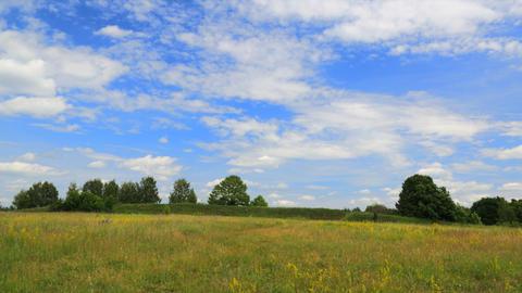 Summer field timelapse Stock Video Footage