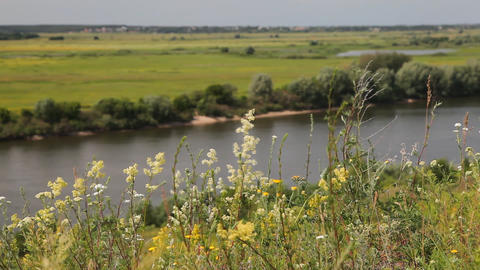 Riverbank landscape Footage