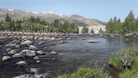 Rapid mountain river in Mongolian Altai Stock Video Footage