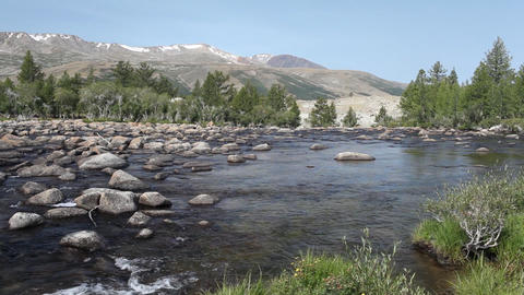 Rapid mountain river in Mongolian Altai Footage