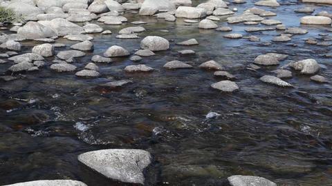 Rapid mountain river in Mongolian Altai ( Dayan ) Stock Video Footage