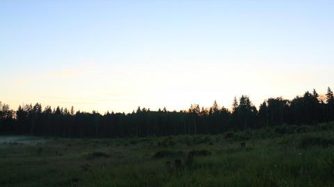 Summer sunrise timelapse Stock Video Footage