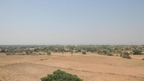 Panorama of Bagan Stock Video Footage
