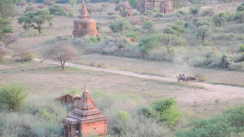 Cart in Bagan Stock Video Footage
