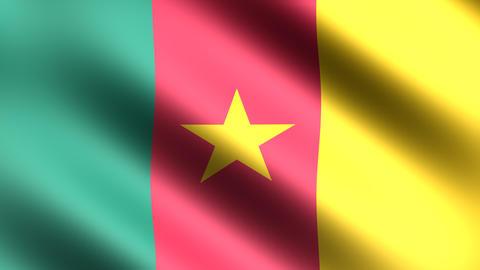 4K Flag Cameroon Stock Video Footage