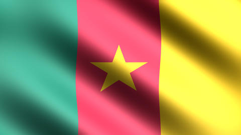 4K Flag Cameroon Stock Video Footage