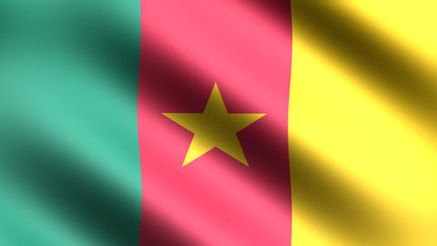4K Flag Cameroon Animation