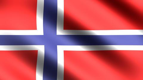 4k Flag Norway Stock Video Footage
