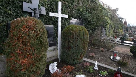 Anneliese Michel grave pan tilt shot 10924 Stock Video Footage