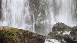 Forest waterfall detail Stock Video Footage