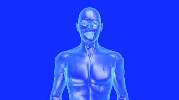 3D transparent human nude body Stock Video Footage