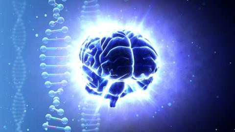Brain 2 A 1 Bm HD Stock Video Footage