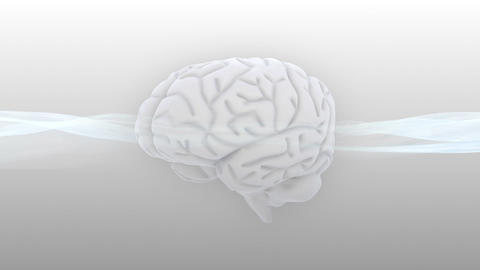 Brain 2 A 1 Sm HD Stock Video Footage