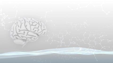 Brain 2 A 2 Sm HD Stock Video Footage