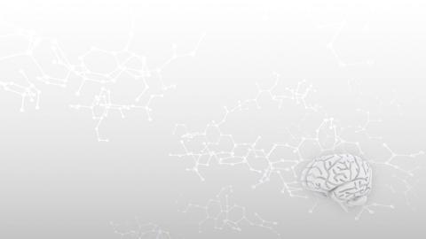 Brain 2 A 3 Sm HD CG動画素材