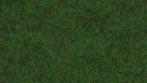 Grass Field Loop Animation
