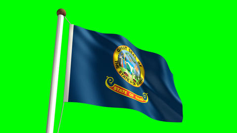 Idaho flag Stock Video Footage