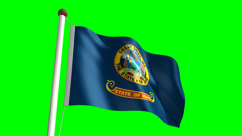 Idaho flag Stock Video Footage
