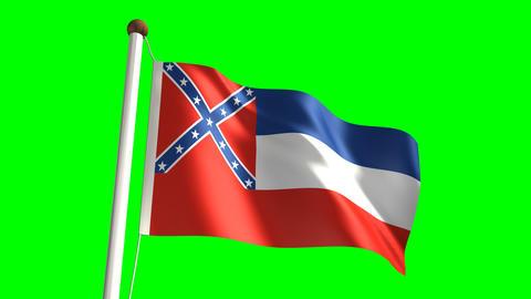 Mississippi flag Stock Video Footage
