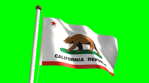 California flag Stock Video Footage