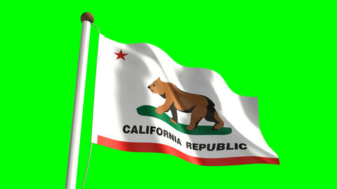 California Flag stock footage