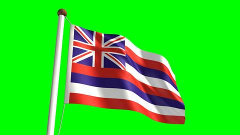 Hawaii flag Stock Video Footage