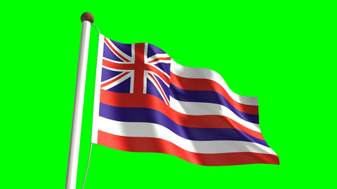 Hawaii flag Animation