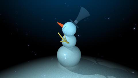 I observe a snowman Stock Video Footage