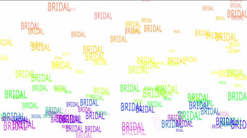 BRIDAL stock footage