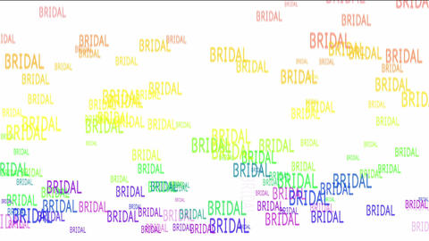 BRIDAL Stock Video Footage