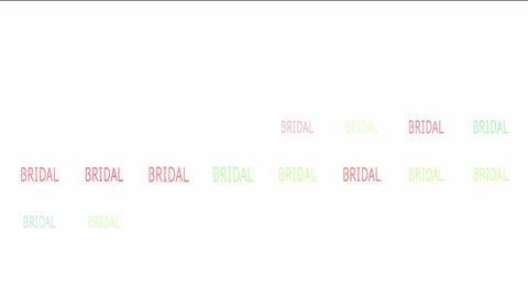 BRIDAL Animation