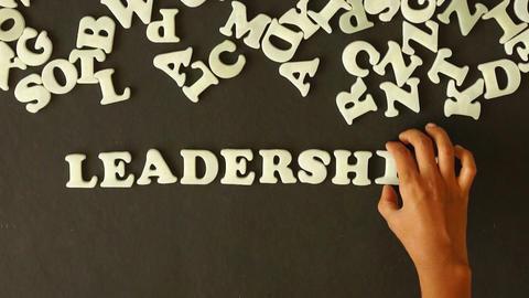 Leadership Stock Video Footage
