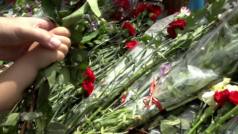 Laying Flowers Stock Video Footage